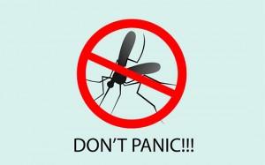 Comprar lámpara mata insectos