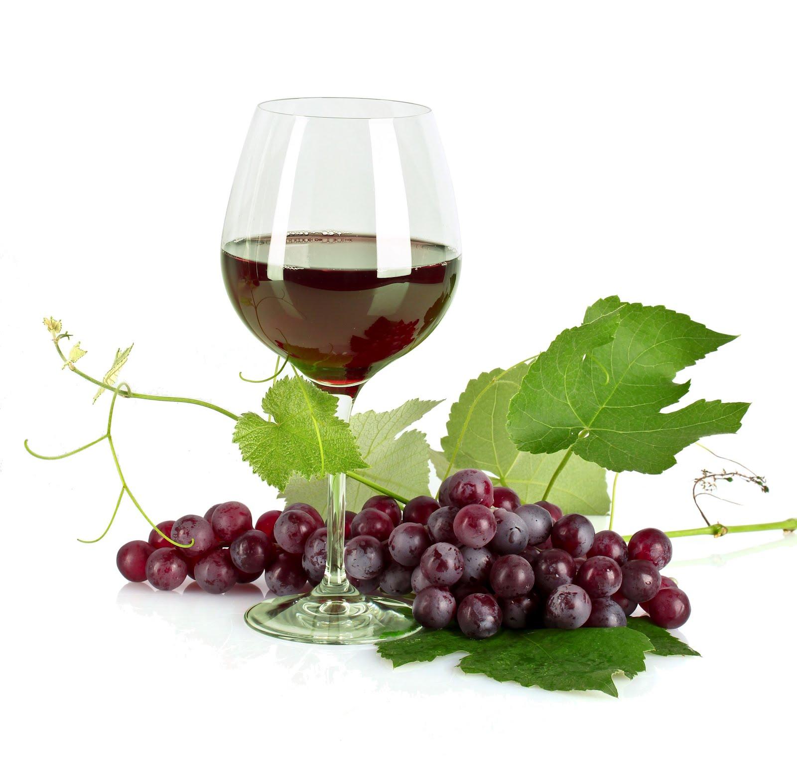 Elegir un buen vino para cada momento
