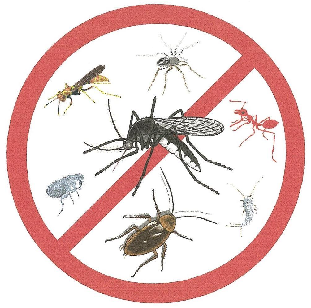mata mosquitos