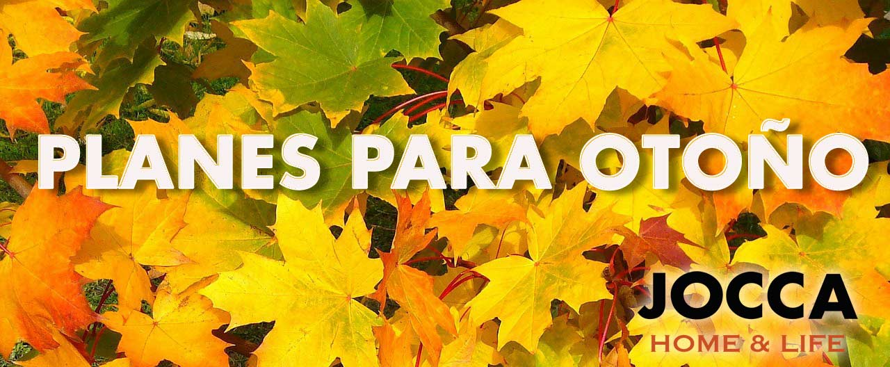 planes-para-otoño-jocca